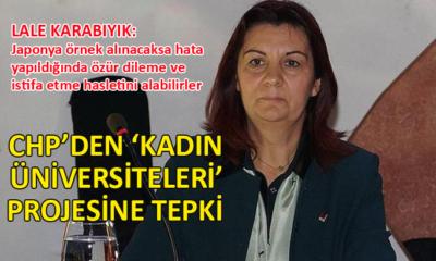 CHP Genel Başkan Yardımcısı Lale Karabıyık, Meclis'te konuştu