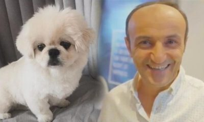 Ersin Korkut, yeni köpeğinin fotoğrafını paylaştı!