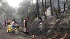 Heybeliada'da orman yangını…