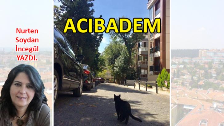 ACIBADEM