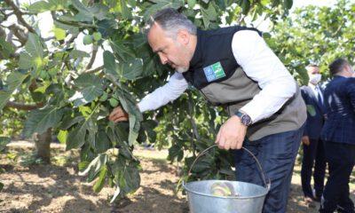 Bursa Büyükşehir'de hedefi 1 milyon dolarlık ihracat