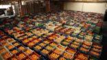 Türkiye'nin yaş meyve sebze ihracatına 5 ürün damga vurdu