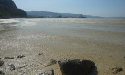 'Deniz salyası' Mudanya sahilini de kapladı