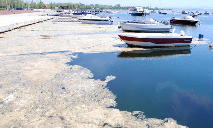 Marmara Denizi'nin dibi de salya…
