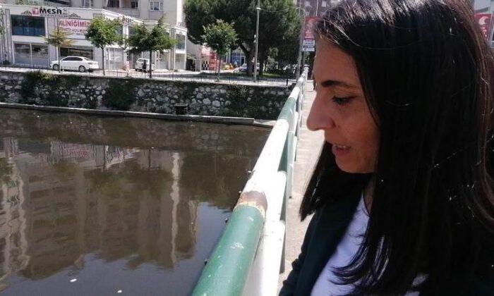 Marmara'ya dökülen dere kirlilikten geçilmiyor