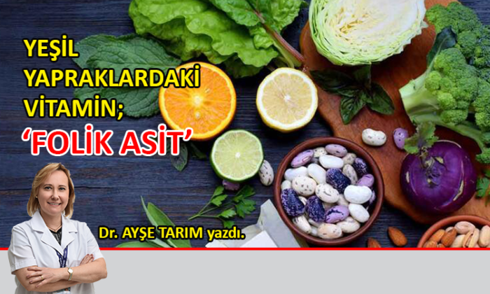 Yeşil yapraklardaki vitamin; 'Folik Asit'