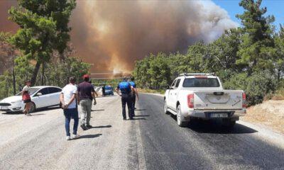 Manavgat'ta 4 ayrı bölgede orman yangını