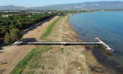 İznik Gölü'nde tehlike çanları…