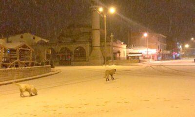 Kangal'da beklenen kar nihayet yağmaya başladı