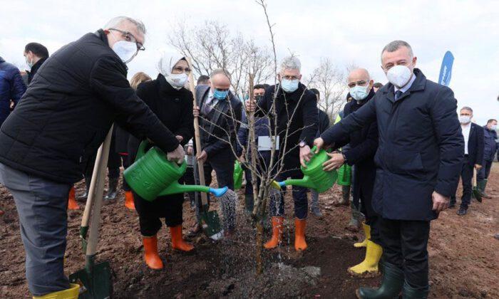 Kocaeli'de sağlık çalışanları ormanına ilk can suyu