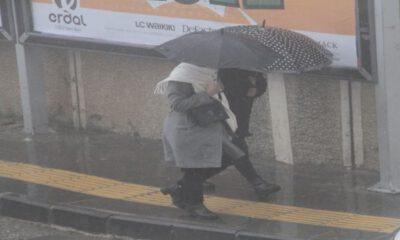 Mardin'de yağışlar çiftçinin yüzünü güldürdü